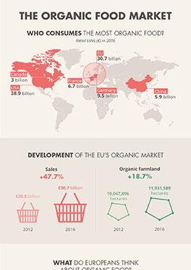organic_food_market (thumb)